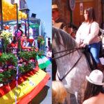 Normas carrozas/caballos